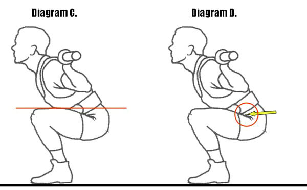 Parallel squat diagram