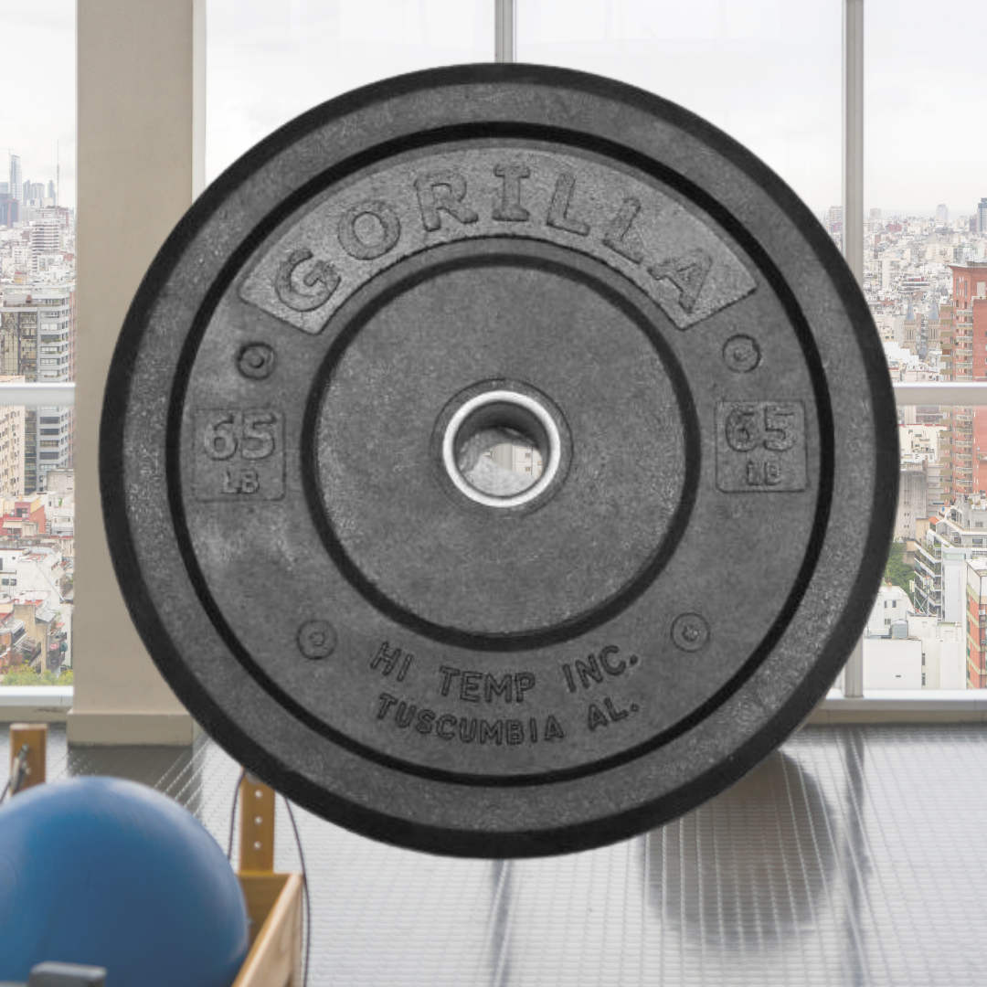 10 Top 10 Rogue Fitness Weight Plates in 2020 - Oct 2021