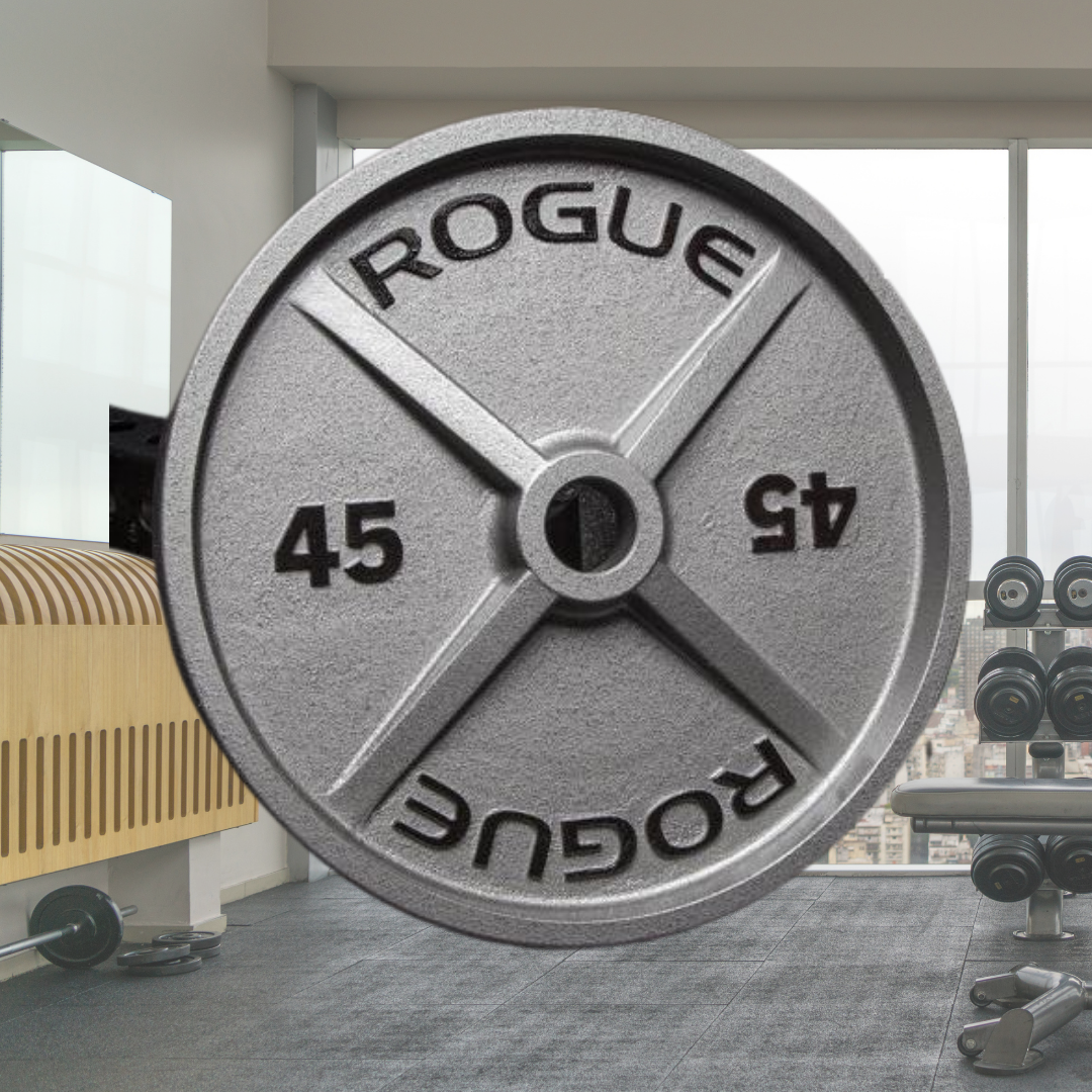 2 Top 10 Rogue Fitness Weight Plates in 2020 - Oct 2021