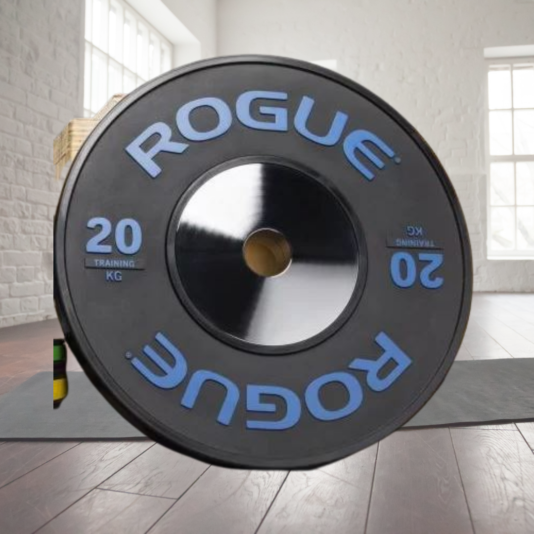 3 Top 10 Rogue Fitness Weight Plates in 2020 - Oct 2021