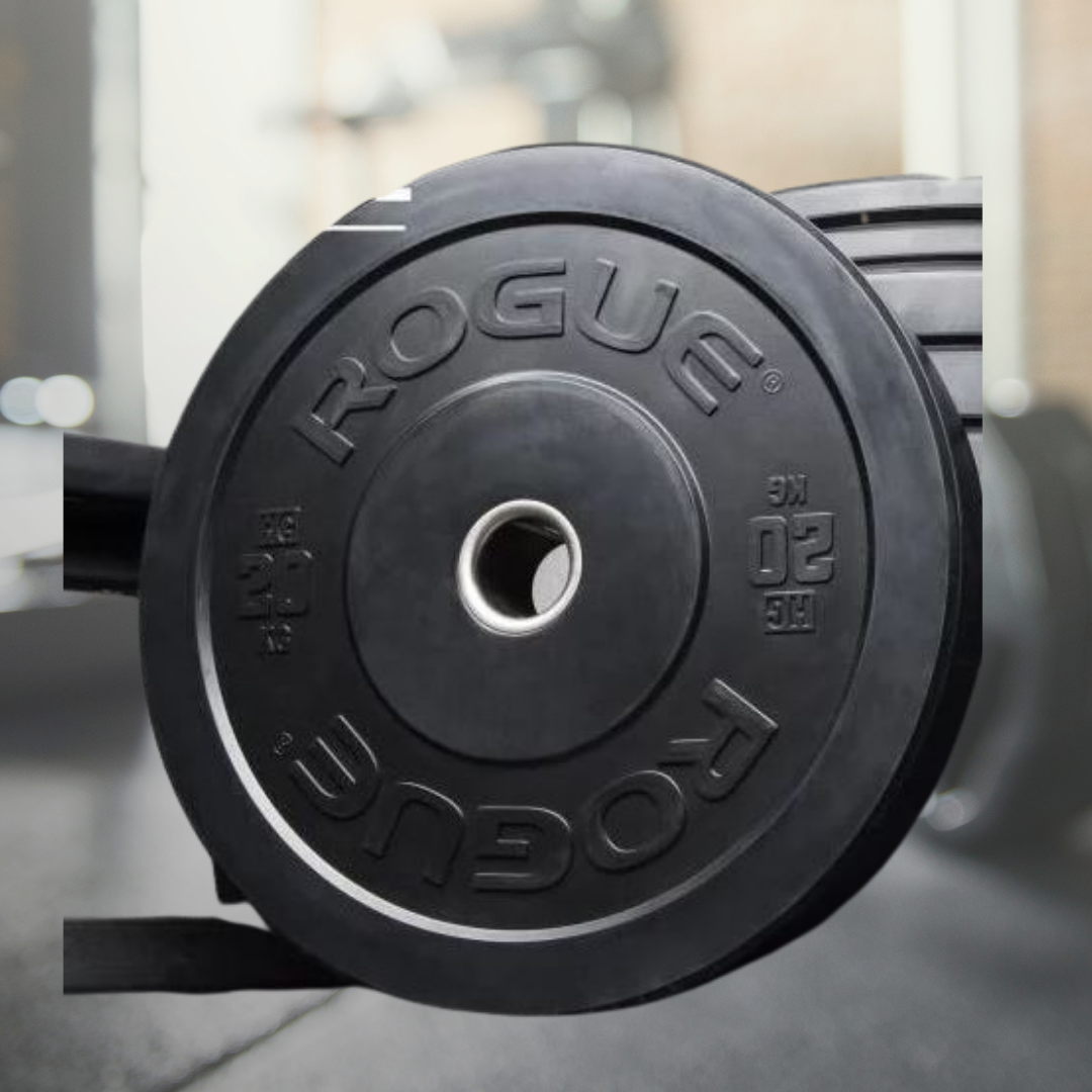 5 Top 10 Rogue Fitness Weight Plates in 2020 - Oct 2021