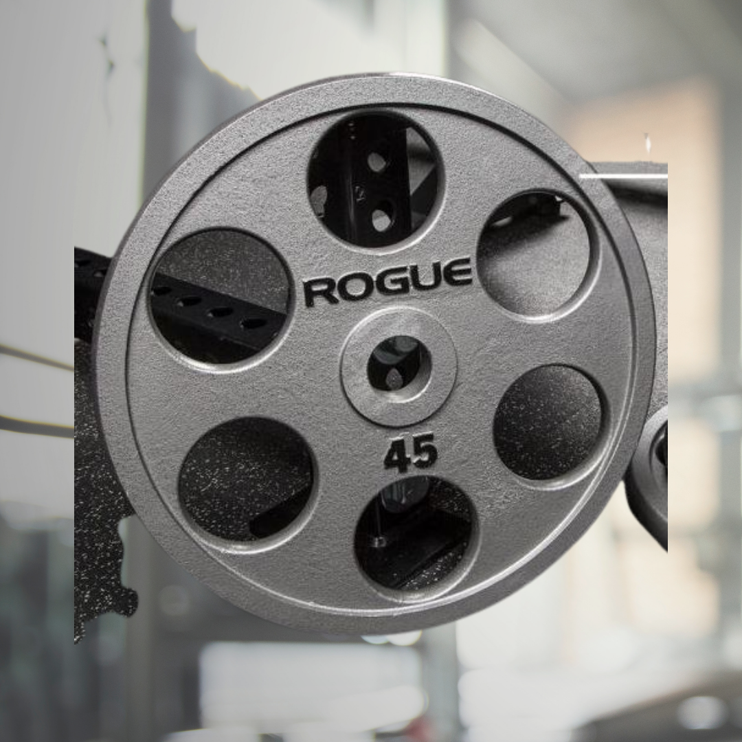 6 Top 10 Rogue Fitness Weight Plates in 2020 - Oct 2021