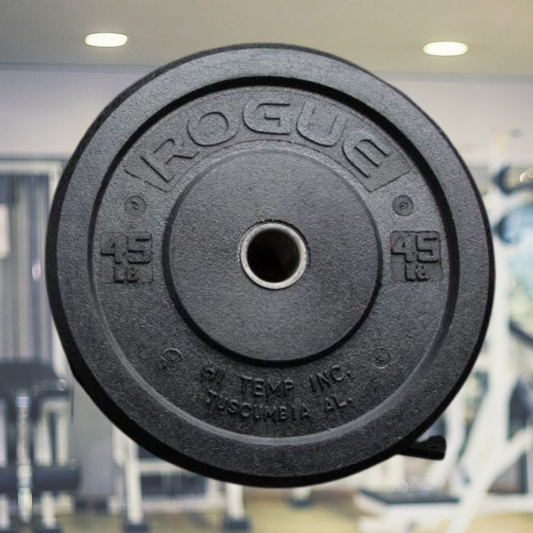 7 Top 10 Rogue Fitness Weight Plates in 2020 - Oct 2021