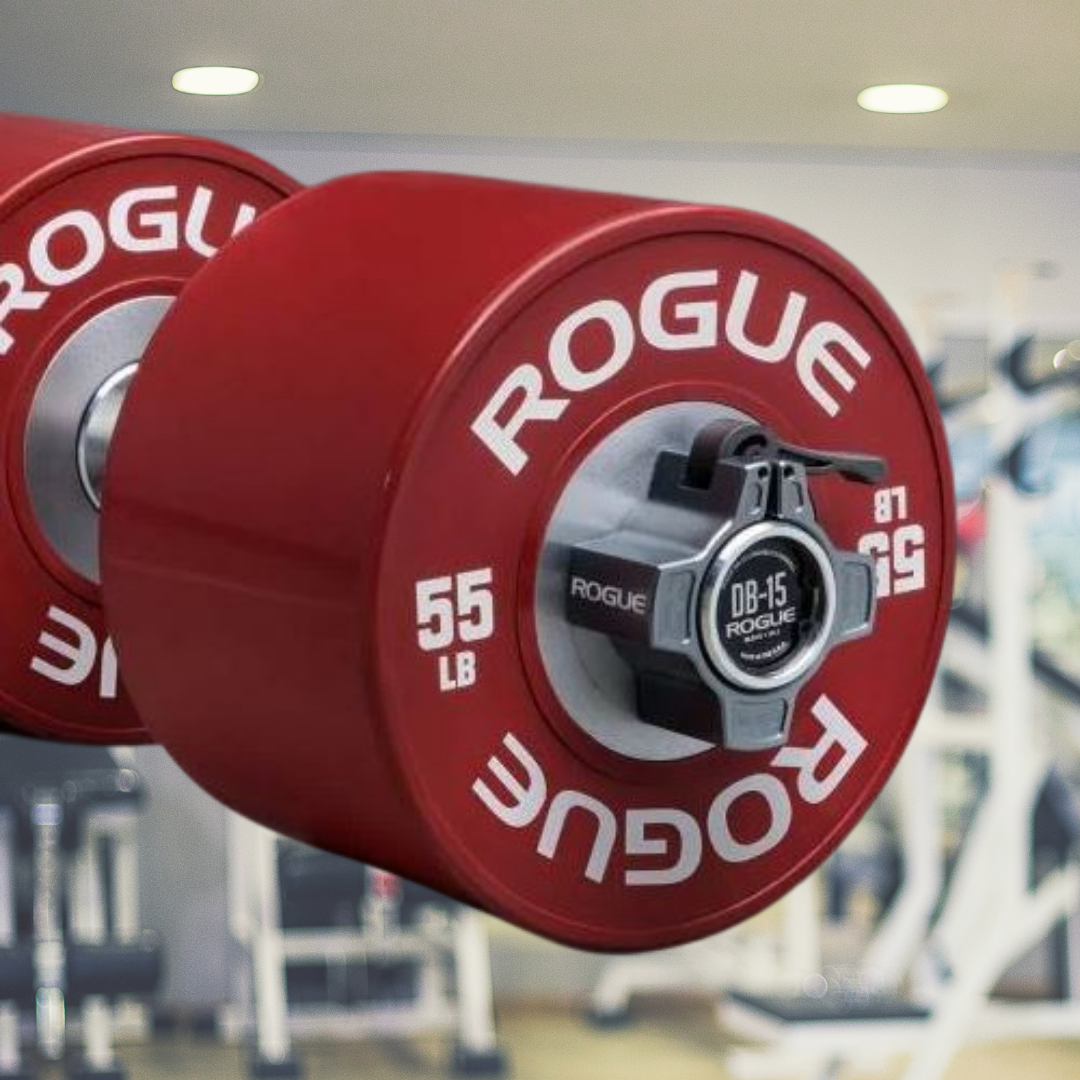 8 Top 10 Rogue Fitness Weight Plates in 2020 - Oct 2021