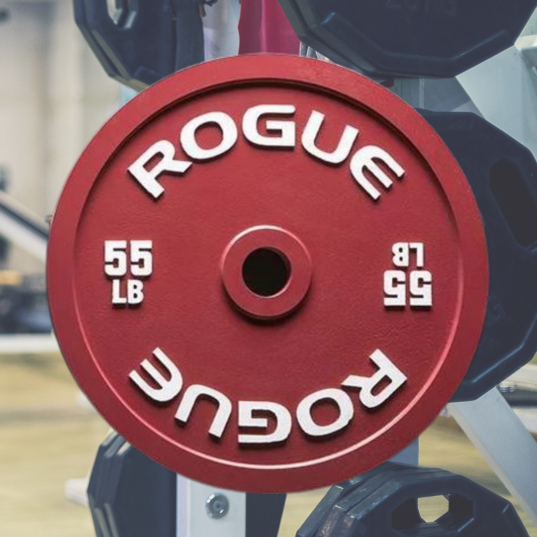 9 Top 10 Rogue Fitness Weight Plates in 2020 - Oct 2021