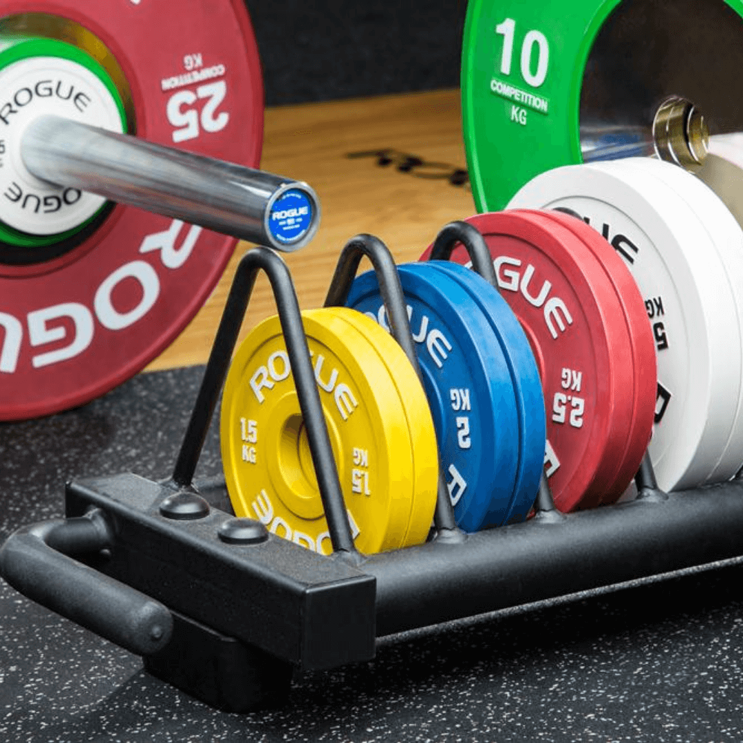 Top 10 Rogue Fitness Weight Plates in 2020 (2)