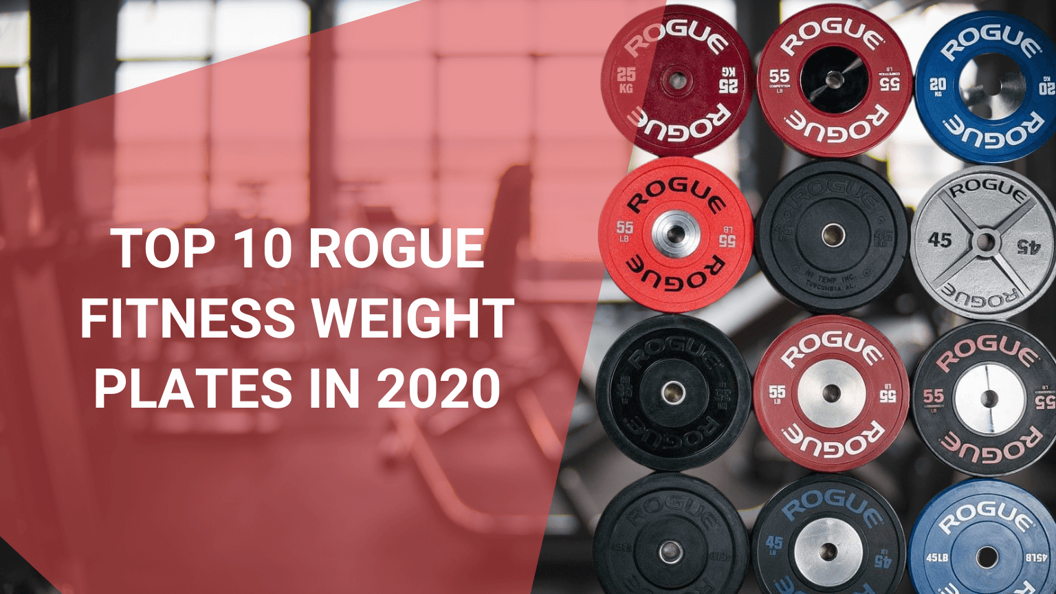 Top 10 Rogue Fitness Weight Plates in 2020 - Oct 2021